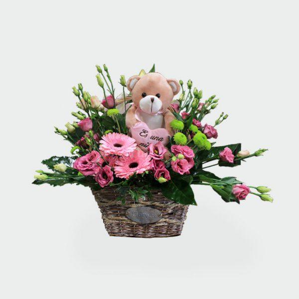 flores nacimientos
